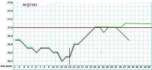 Măsurarea temperaturii bazale a corpului (BT). Regulamentele. Descifrarea graficele de temperatura corpului bazale