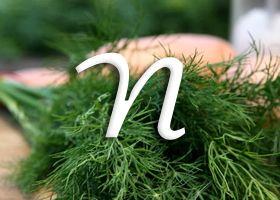 Vitamin n (liponska kiselina)