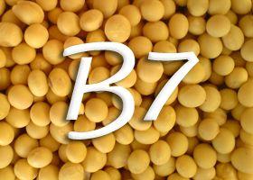 Witamina B7 (biotyna)